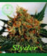Slyder - click to compare prices